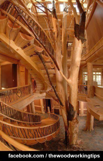 Insane Tree Houses 64 best insane tree houses images on pinterest | architecture
