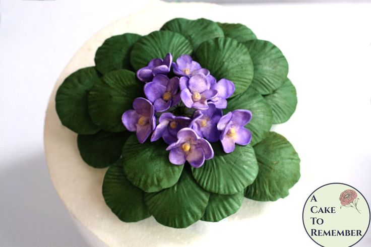 "Large African violets gumpaste cake topper. 7-8"" across. Edible flowers for cakes or wedding cake toppers. by ACakeToRemember on Etsy"