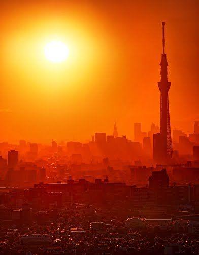 スカイツリーと高層ビルのシルエット Silhouette of Tokyo Sky Tree and Skyscrapers