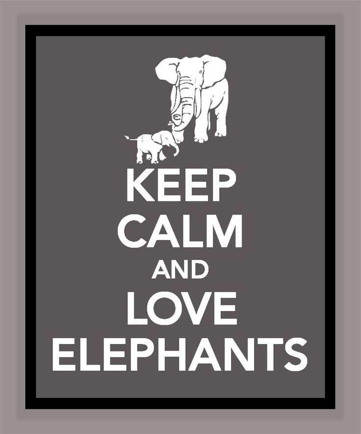Keep Calm and Love Elephants Print  Must Have!!