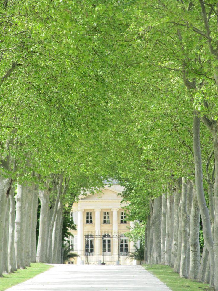 Château Margaux, Margaux, Bordeaux, France                                                                                                                                                      More