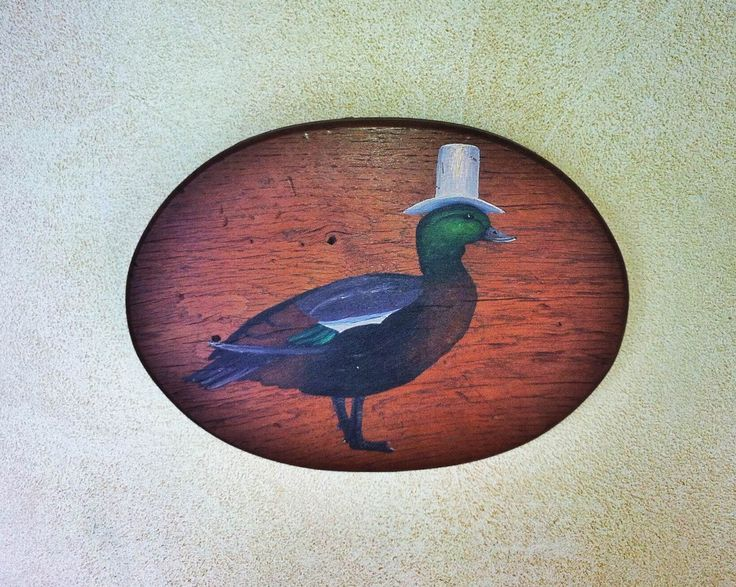 Unique hand painted bathroom signs at Blanket Bay #upcycle #Paradiseduck #Gents