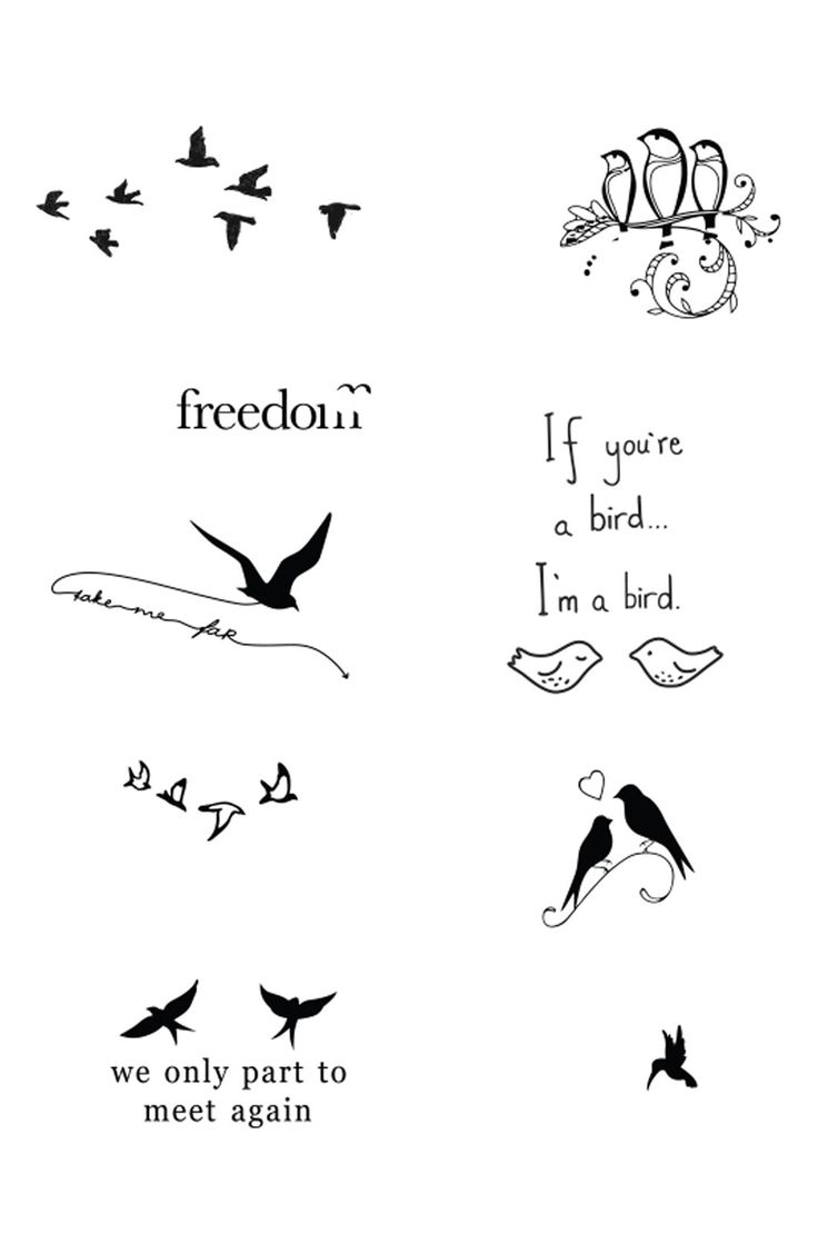Free shipping and returns on Tattify™ 'Bird Is the Word' Temporary Tattoos at Nordstrom.com. Put a bird on it with a collection of 18 temporary tattoos.How to use: The tattoos last anywhere from 2-7 days and are easily applied with water.