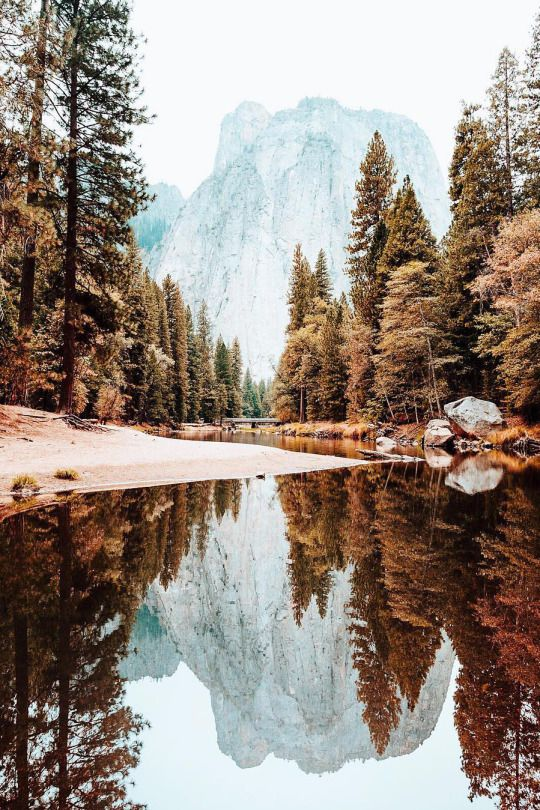 Yosemite National Park | Photo by Ryan Longnecker and posted on his Tumblr