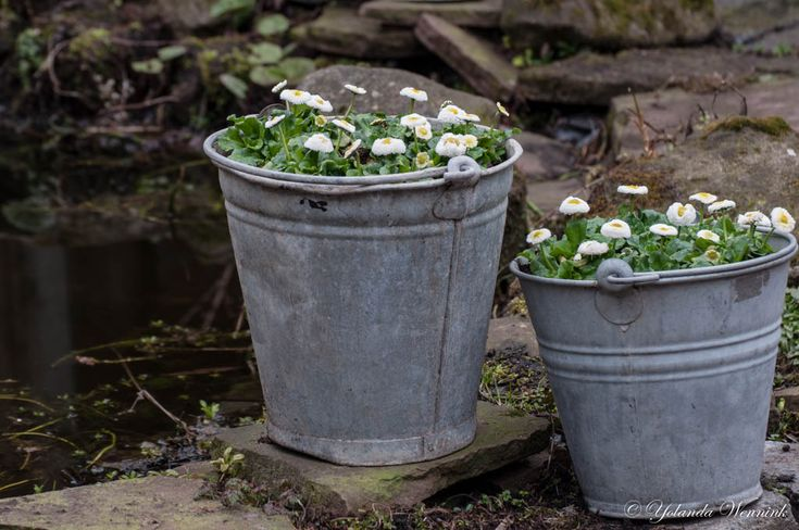 10 images about garden galvanized zinc buckets on pinterest gardens brocante and tuin - Galvanized containers for gardening ...
