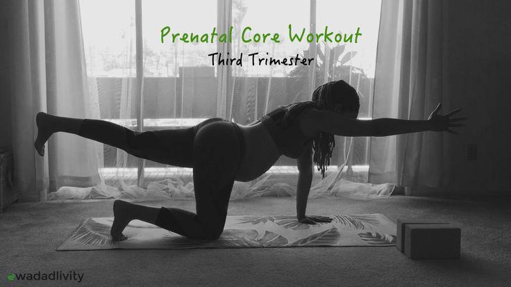 Prenatal Core Workout (Third Trimester)