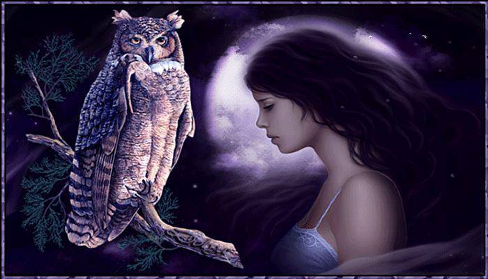 Animation στη νύχτα το φεγγάρι είναι στοχαστικό και θλιβερή κορίτσι της διπλανής πόρτας, σε έναν κλάδο, κάθονται κουκουβάγια, SIFCO το βράδυ το φεγγάρι είναι στοχαστικό και θλιβερή κορίτσι της διπλανής πόρτας, σε έναν κλάδο, κουκουβάγια συνεδρίασης