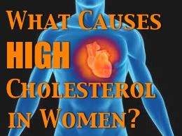 What Causes High Cholesterol In Women? [Article]