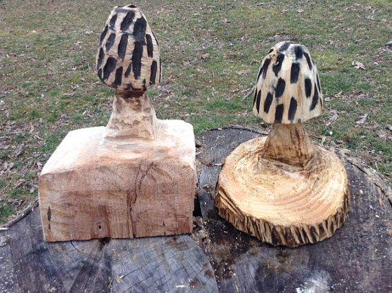 Best images about morel world on pinterest mushroom