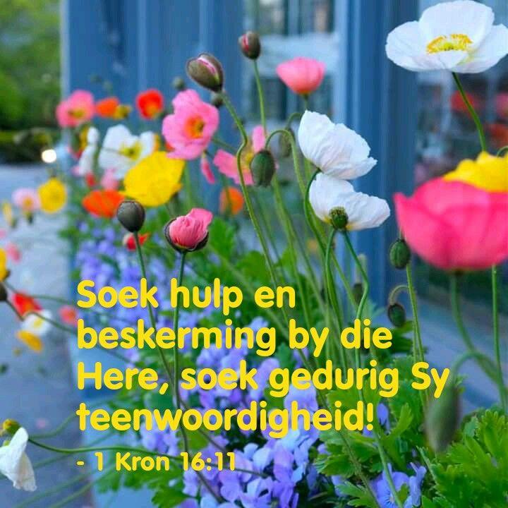 Soek hulp en beskerming by God