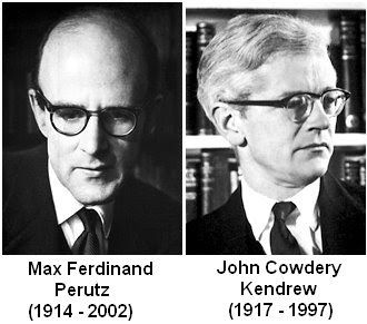 """Max Perutz shared the 1962 Nobel Prize in Chemistry with John Kendrew """"for… studies of the structures of globular proteins."""" Kendrew studied the structure of hemoglobin using x-ray diffraction, examining ~250,000 reflections. Perutz wrote on the subject of oxidation of the ferrous ion in his 1990 book, Mechanisms of Cooperativity and Allosteric Regulation in Proteins."""