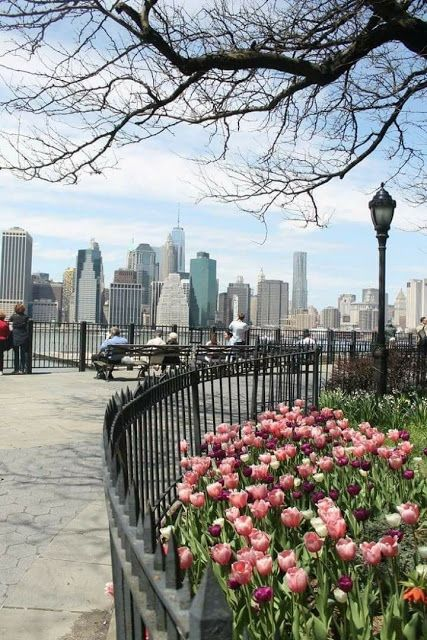 El lugar para ayudar a todo el mundo a aprender cómo hacer cualquier cosa. ¡¡…  – New York Forever !