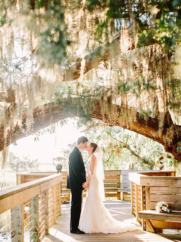 Spanish moss portrait | Amy Arrington #wedding