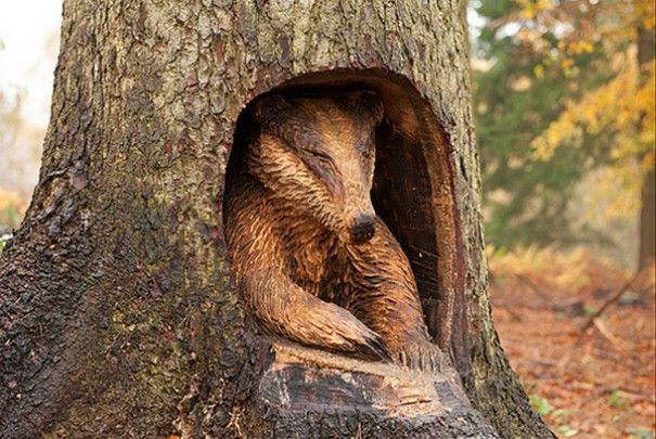 Images about tree carving on pinterest artworks
