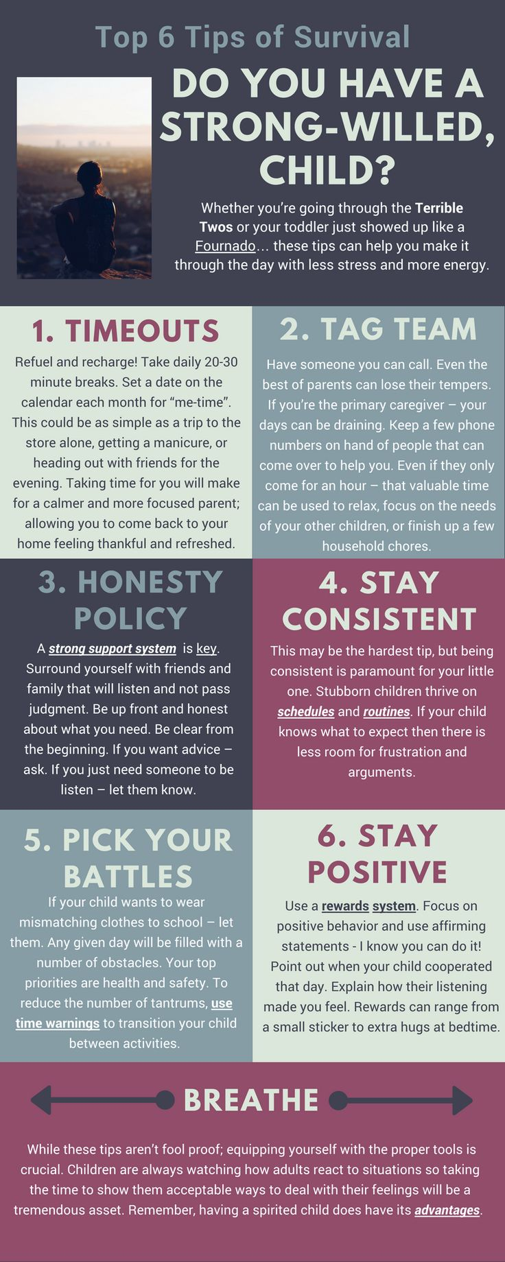 Best 25 strong willed child ideas on pinterest parenting top 6 survival tips strong willed stubborn children or child biocorpaavc