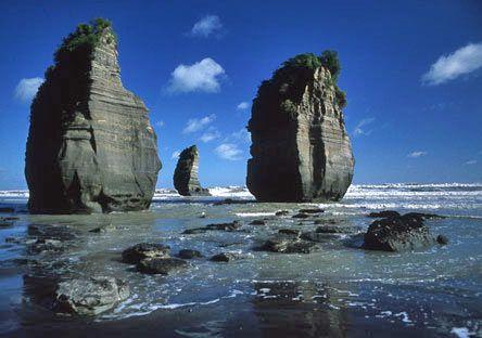 new zealand attractions | GO Rentals Explore New Zealand - Waikato Region