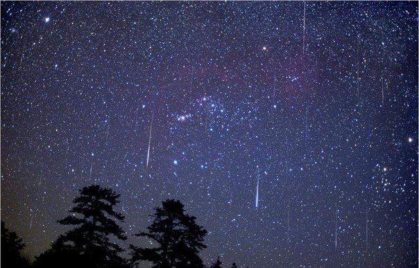 Метеоритный дождь прольется в ночь на 13 августа / Astro Analytics