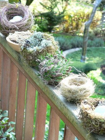 I'd love to decorate the Christmas tree with bird nests! The Pecks: How-to make your own decorative bird nests | OregonLive.com