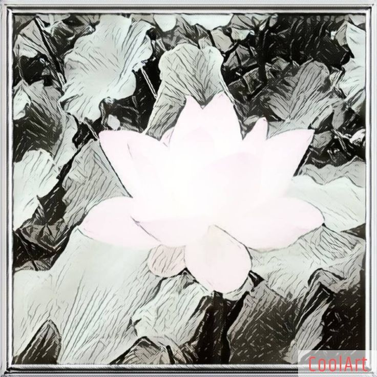 # Glamour 4/6 of #CoolArtApp ~ Cartoon Photo & Picture Filter App ~ by Fotoable,Inc. ➯ #CoolArtEffects #CoolArt_FotoAble #NeuralArt #ArtFilters #PrismaEffects ➫ #PaintLab - { Effects x 32*+%+Sizes } from @FotoRus_Official ~ Camera & Photo Editor & Pic Collage Maker. #FotoRusApp #FotoRus_Official ~ by Fotoable,Inc.
