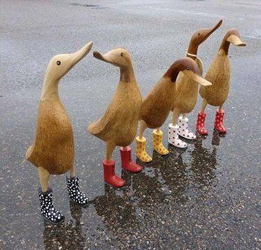 Duck Ænder med gummistøvler
