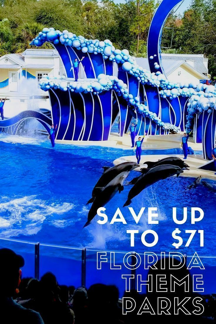 Florida Vacation Ideas - Want to save money on your Florida vacation? Check out these great theme park ticket deals to get cheap tickets to Florida theme parks in Orlando & Tampa. Save money (up to $71) on tickets to SeaWorld Orlando, Aquatica Orlando, Busch Gardens Tampa, Adventure Island Tampa. #Orlando #Tampa #Aquatica #Dolphins #TampaBay #AdventureIsland #WaterPark #Deal #BuschGardens #SeaWorld #OrlandoTrip #FamilyTravel #FamilyTrip #Florida #Trip Things to Do in Orlando & Tampa