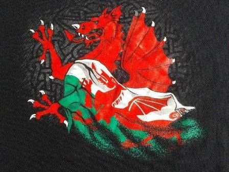 "the most famous symbol of Wales, the Red Dragon, or as it is known in Welsh, "" Y Ddraig Goch"" (pronounced uh thraig go-k)"