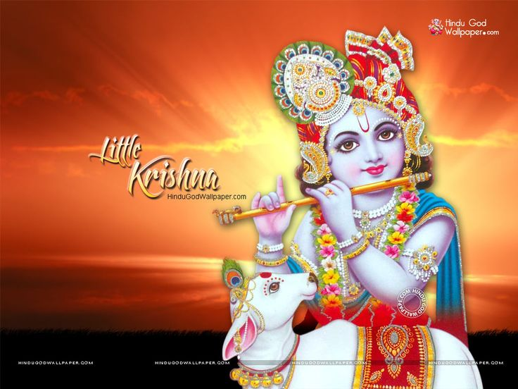 Mor Pankh Hd Wallpaper: 1000+ Images About Bal Krishna Wallpapers On Pinterest