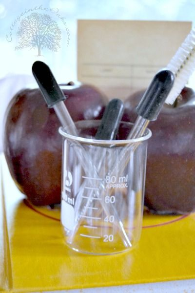 Beakers and Droppers for Back to School Centerpiece
