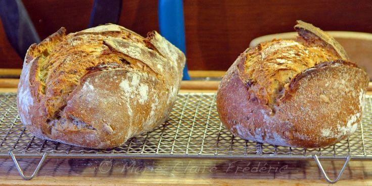 Comment faire votre premier #pain au levain - Ni Cru Ni Cuit
