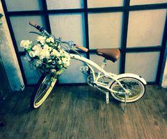 such a cute little bike
