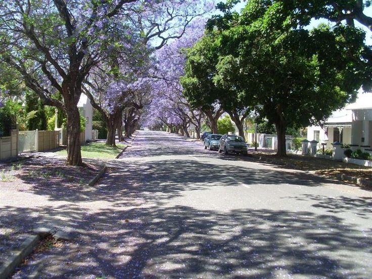 Tranquility Self-Catering - Tranquility Self-Catering is a newly renovated 1938 vintage home, accommodating up to nine people in three en-suite bedrooms. We offer off street secure parking and a large shady barbecue patio situated ... #weekendgetaways #robertson #southafrica