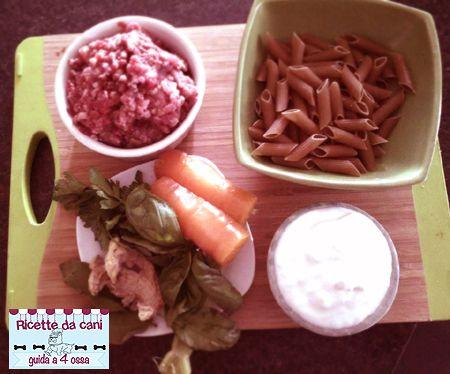 Penne Integrali al Tacchino in salsa Yogurt - (Ricette da Cani)