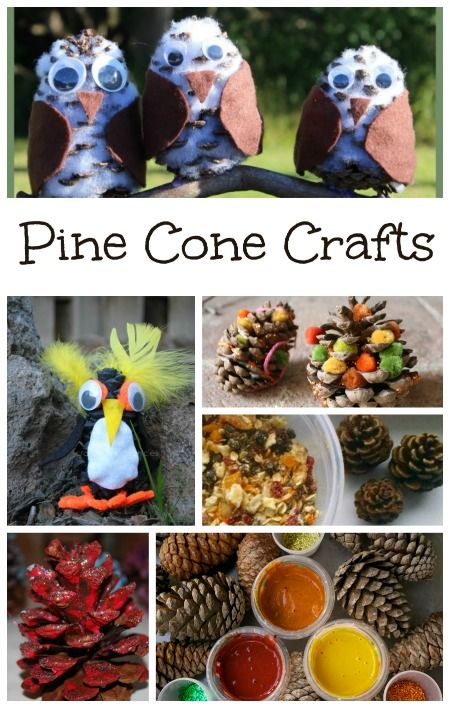 Pine Cone Crafts for Kids (good use for the all of the ones I pick up from the land)