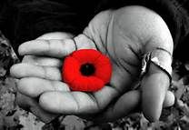 Remembrance Day poppy - Bing Images