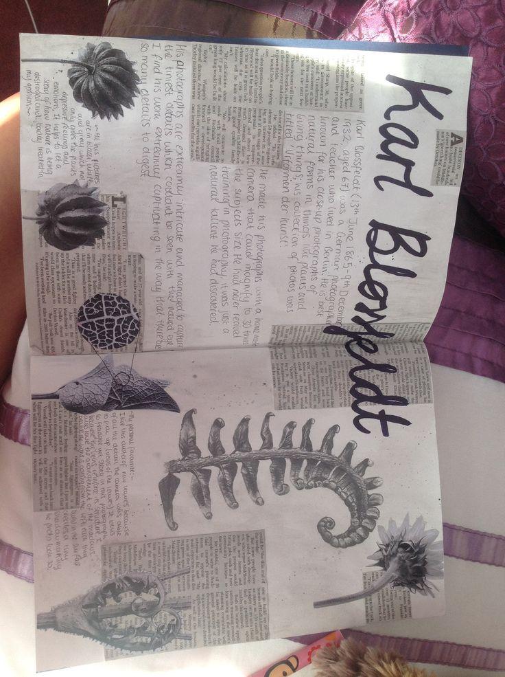 Karl Blossfeldt-Natural forms GCSE sketchbook