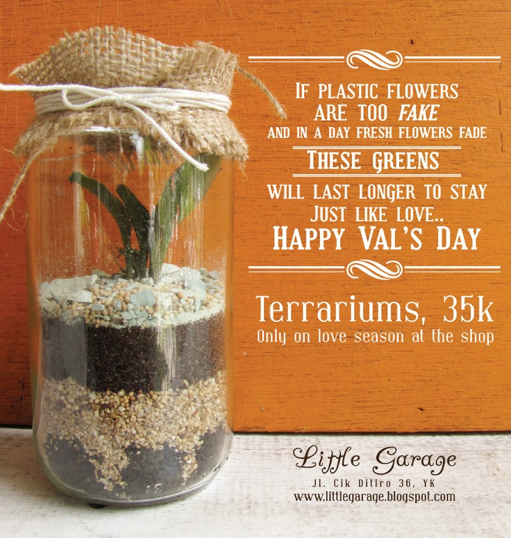 POSTER - for Little Garage (terrariums)