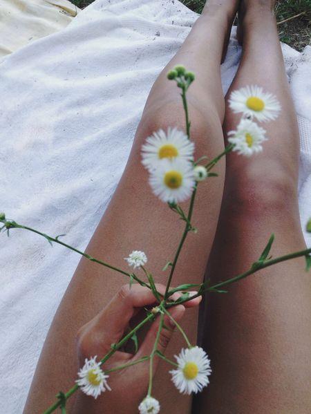 Pickin' daisies • Jenn Tamati • EyeEm