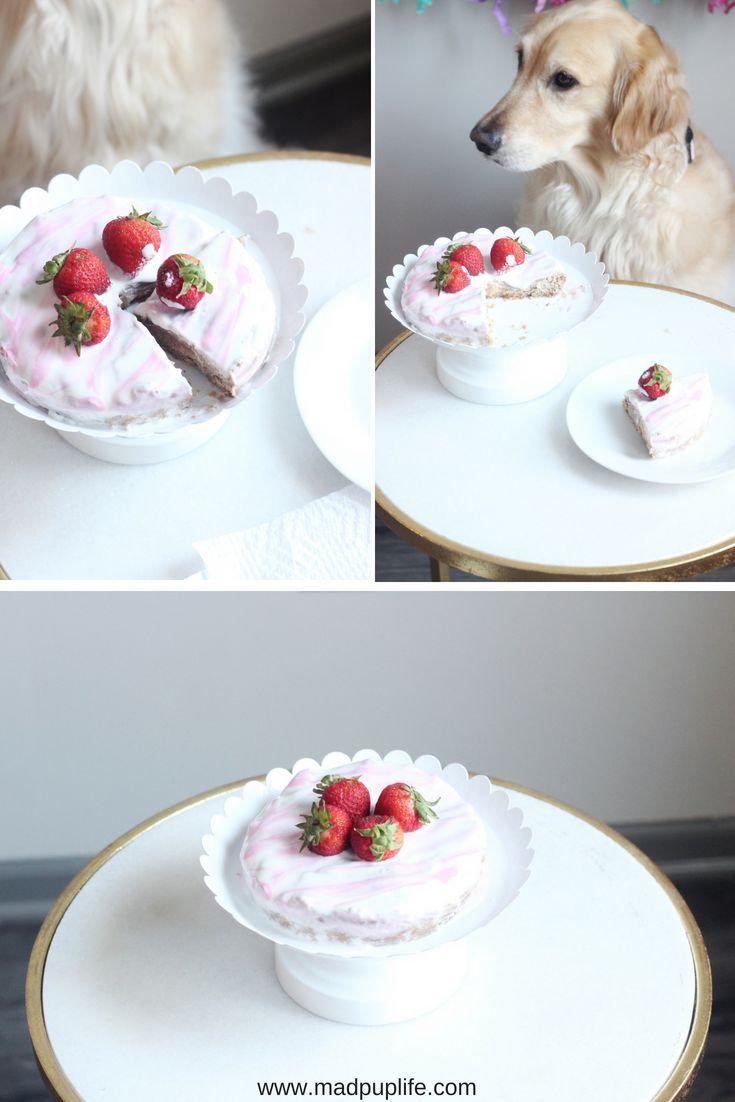 Strawberry Shortcake Recipe For Dogs Dog Cake Recipes Dog Cakes Homemade Dog Treats