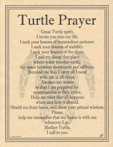 Turtle Prayer Parchment Page. Turtle Parchment. The Fine Print. You will find a claim form on the back of the sales receipts enclosed with your order. The order must be paid for all at once. | eBay!