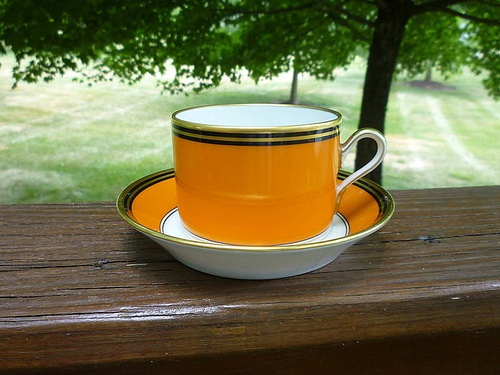 Ginori orange teacup & saucer | Orange | Tea cup saucer, Tea cups