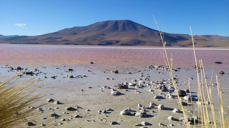 Atacama Desert Bolivia,- Laguna Colorada