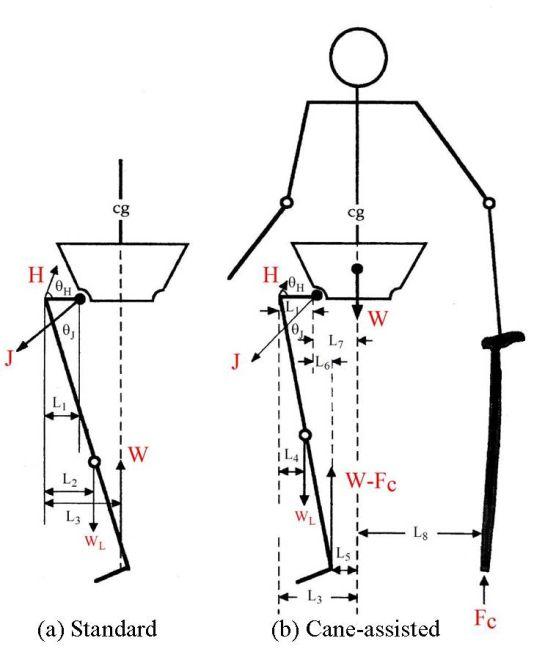 Stick figure anatomy