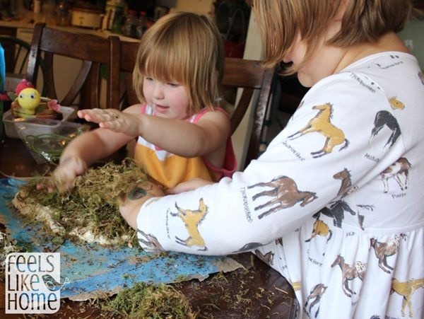 Make your own volcanic island!  Craft idea to go along with the book, An Island Grows by Lola Shaefer (Feels Like Home)