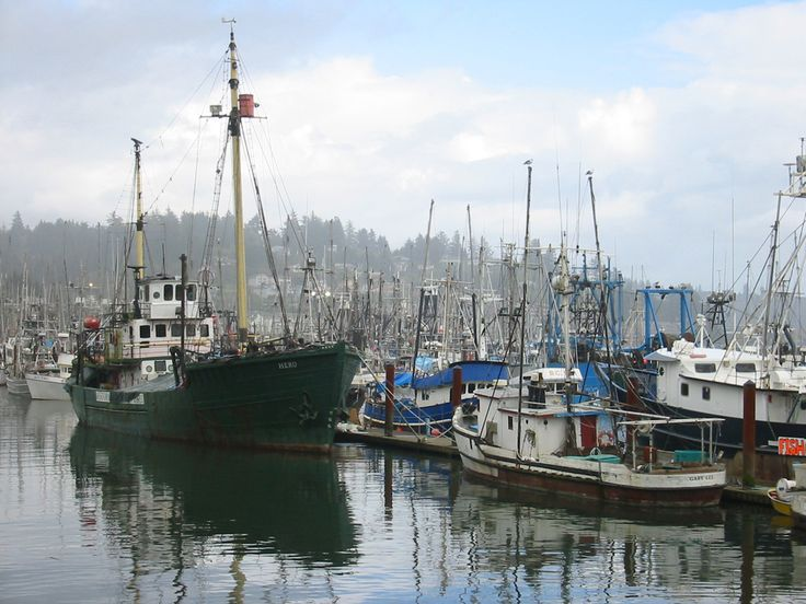 14 best oregon coast images on pinterest oregon coast for Lincoln city fishing charters