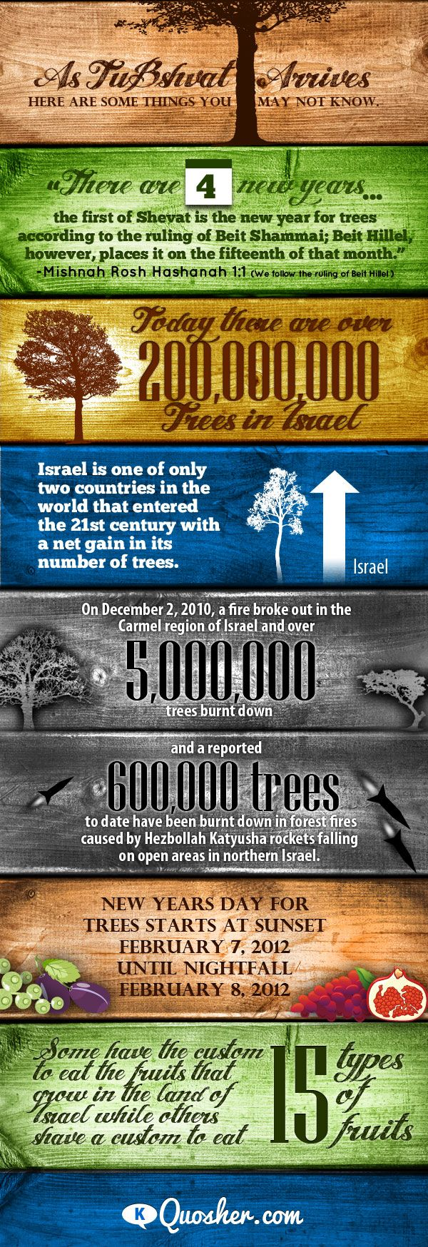 We love the holiday and meaning in Tu B'Shevat.  This infographic is a great way to see how your donation of a tree helps Israel.  #Dreideljams
