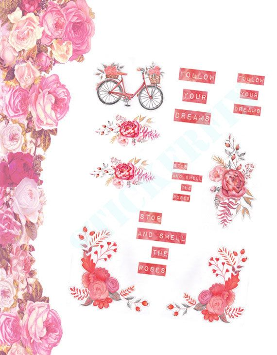 Riding Along On My Push Bike Honey Beautiful roses and old