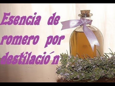 ESENCIA DE ROMERO POR DESTILACION FACIL - YouTube