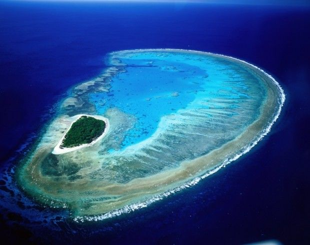 The World Lady Musgrave Island, The Great Barrier Reef,Australia 20 Amazing Places on Earth You've Got To See