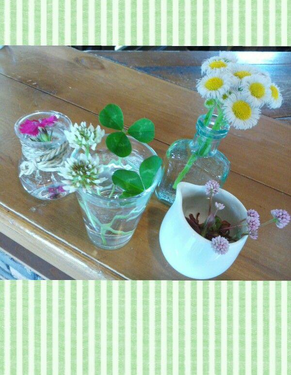 季節の小さなお花達がやさしくお出迎え*