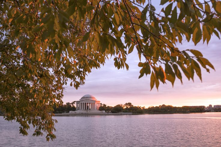 cool D.C.-area forecast: Typical November weather today, big warm up tomorrow and Thursday